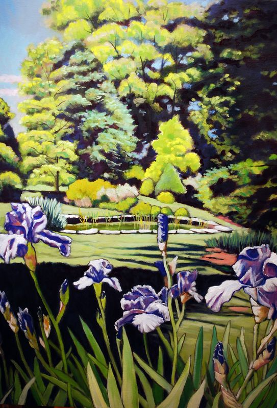 Blue Iris with Pond Scene