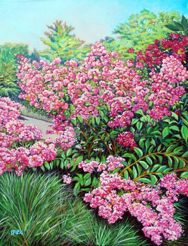 Pink Flowers with path
