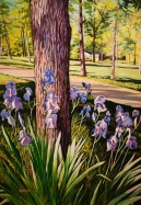 Blue Iris around Tree