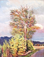 large yellow brush and tree
